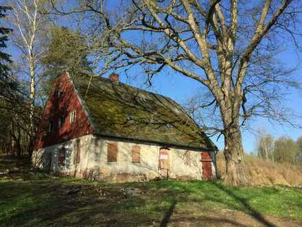 Die besondere Immobilie für Liebhaber, Hobbylandwirte…