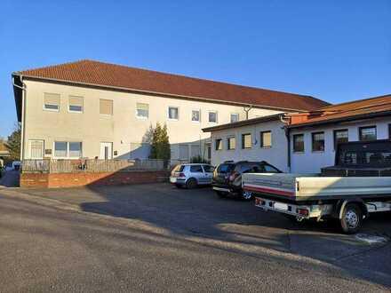 Gemütliches Appartement in LD-Godramstein zu vermieten