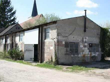 Scheibenhardt: Halle mit betoniertem Vorplatz