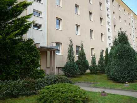 Wunderschöne 3 Raum Wohnung in ruhiger Lage