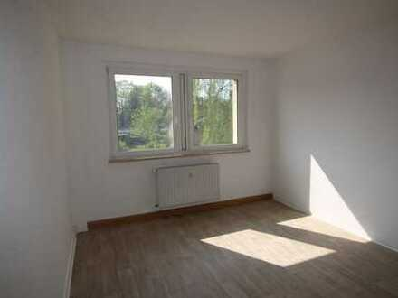 Gemütliche 2-Zimmerwohnung zu vermieten!! **NEU renoviert**