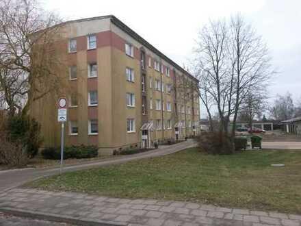 neu renovierte 3 Raum Wohnung am Ortsrand von Burg Stargard