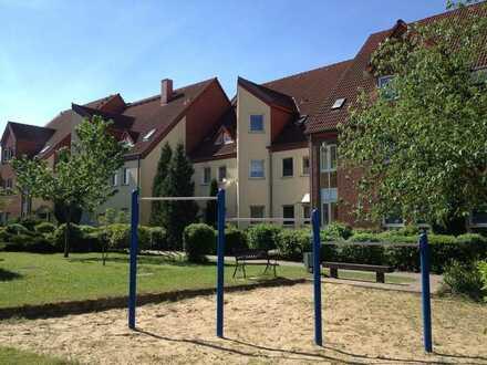Müncheberg sonnige 4 Zimmer Erdgeschosswohnung