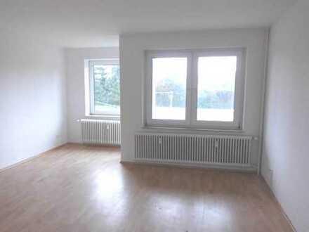 '' 3 - Zimmer plus Küche und Bad - Was brauchen Sie mehr ! ''