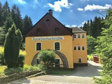 Top-Grundstück in Einzellage am Waldrand in 09456 Mildenau