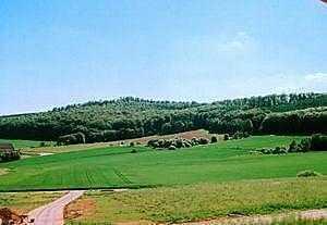 Nur noch 1 Grundstück frei! Traumhafte Südhanglage in Waldnähe!