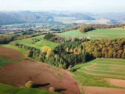 AUKTION 07.12.2019 in Köln * vertragsfreies Land- und forstwirtschaftliches Grundstück