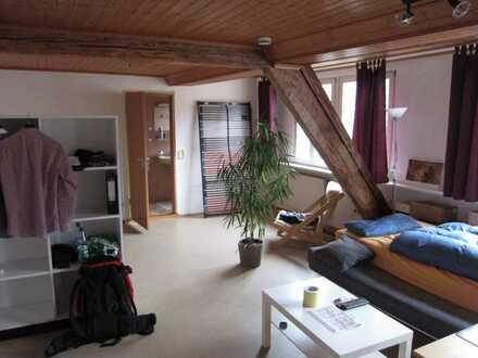 helles 1 Zimmerappartment mit Abstellraum im Zentrum von Speyer zu vermieten