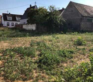 Grundstück in Ludwigshafen