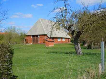 Fachwerkhaus plus Gästehaus - Neu Garge - Amt Neuhaus - Lüneburg - 7700m² Grundstück (Elbe)