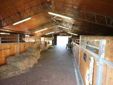 15.400 m² Immobilientraum für Pferdefreunde