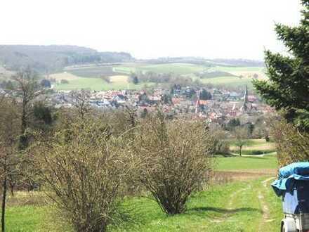 2020 Ihr Traumgrundstück mit Gartenhaus-800m² (kein Bauland) in Höhen Lage von Br.-Heidelsheim!!