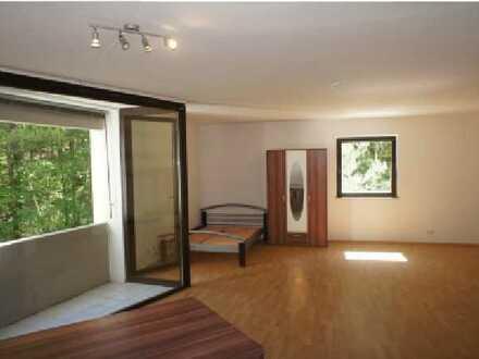 Schöne, geräumige ein Zimmer Wohnung in Saarpfalz-Kreis, Homburg