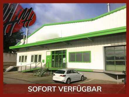 SOFORT VERFÜGBAR ✓ RAMPE ✓ Lager-/Ausstellungsflächen (800 m²) & Büroflächen (100 m²) zu vermieten