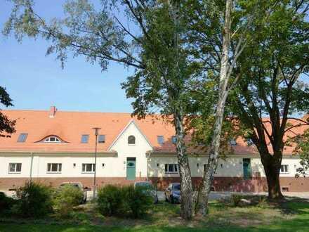 """""""Am Funkerberg - Marstall"""": Gemütliches Familien-Haus mit sonniger West-Gartenterrasse"""