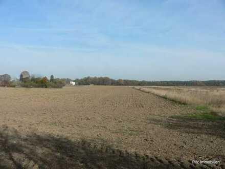 +++ 10 ha Ackerland sowie 5 ha Wald in Oberbarnim im Paket zu verkaufen! +++