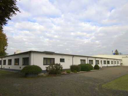 496qm Büro ab Juni 2021 (1200qm Logistik Optional)