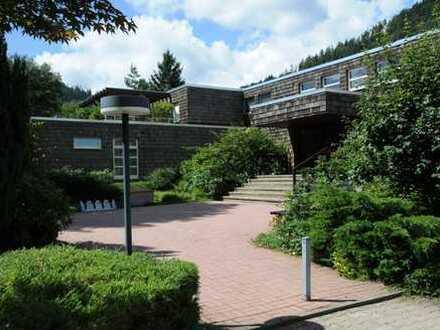 Gepflegte 1-Zimmer-Terrassenwohnung mit Balkon und Einbauküche in Bad Wildbad