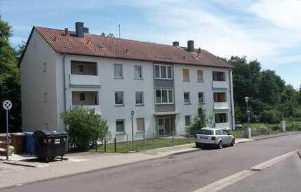 2-Zimmerwohnung mit Balkon in Niederauerbach (Nr.224)