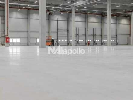 NAI apollo - NEUBAU - ca. 5.000 m² Hallenfläche (Sprinkler/Rampe/ebenerdig) am Frankfurter Flughafen