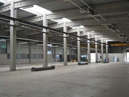 """""""BAUMÜLLER & CO."""" - ca. 10.000 m² Hallen/- Produktionsfläche - Kranbahn + ebenerdige Andienung"""