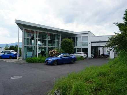 attraktives Investment BMW-Autohaus