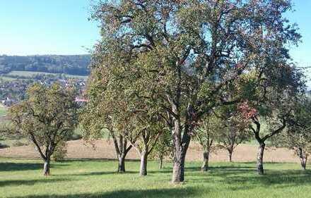 Liebe zur Natur und eigenes Mostobst! Grünland-Streuobstwiese - idyllisch gelegen mit Weitsicht.