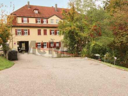 Mitten in der Natur: Gepflegte 1-Zi.-Whg. in denkmalgeschütztem Wohnhaus nahe Regensburg