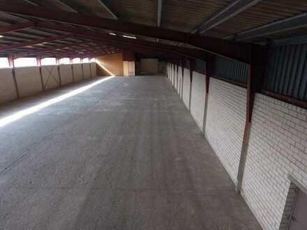 Gewerbehalle im Industriegebiet Schützenstraße zu vermieten