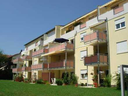 Wunderschöne helle 3 Zimmer Wohnung mit Terrasse