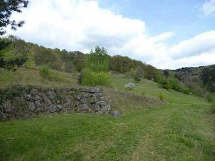Altbausubstanz mit Bauland für 2-4 Häuser und arrondiertem Wiesengrundstück * insgesamt 27 Hektar *