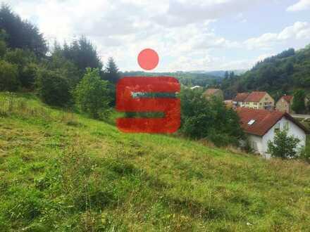 Idylle und viel Platz in der Nähe von Meisenheim
