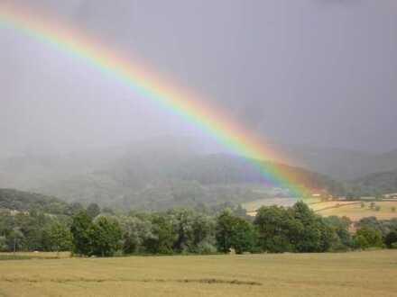 Landwirtschaftliche Grundstücke in der Gemarkung Neidstein 0,3 ha bis 7,5 ha