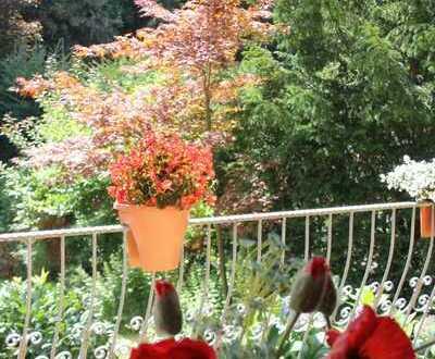 Komfortwohnung mit Garten in bester Lage von Emmelshausen