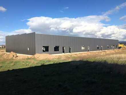 Neubau Gewerbehallen mit Büros ab 270 qm ab Juli 2019 zu vermieten