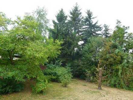 Viel Platz für Ihr Traumhaus in Cottbus-Kiekebusch!