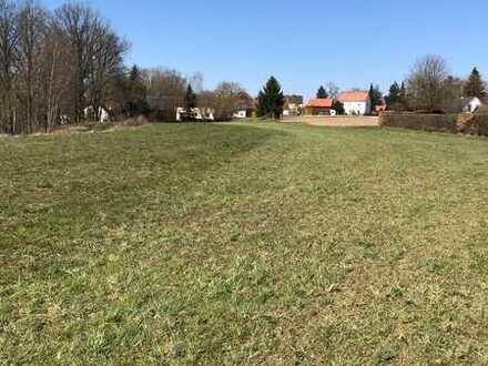 Weitläufiges Grundstück in Creußen/Gottsfeld