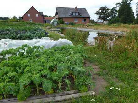 Gartenprojekt auf dem Lande