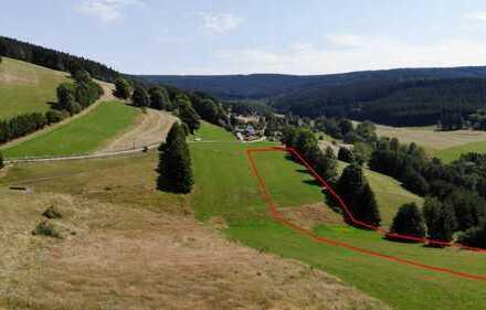 Schönes Stück Ackerland / Feld: 8.644 m² in Breitenbrunn