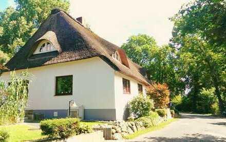 Repräsentativer Landsitz: Bauernhaus mit Reetdach, 3 Wohneinheiten & Ausbaureserve am Lesumdeich