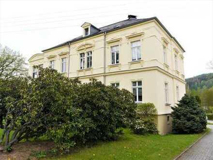 Tolle 2-Raum-Wohnung in schöner Villa