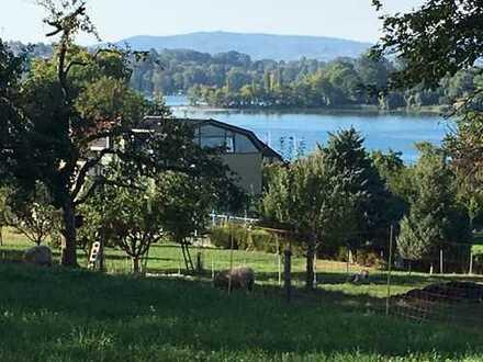 Neubau mit EBK und Balkon: Exklusives Appartement in Konstanz