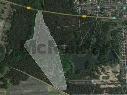 Einmalige Gelegenheit: Großes Forstareal mit über 14 ha, zentral gelegen!