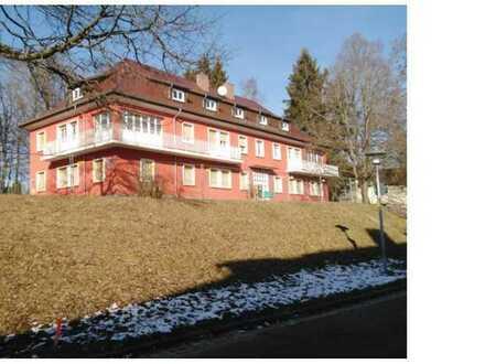 4 Zimmer Wohnung - Erstbezug nach Sanierung, Innenstadtnähe, im Grünen mit Terrasse / Garten