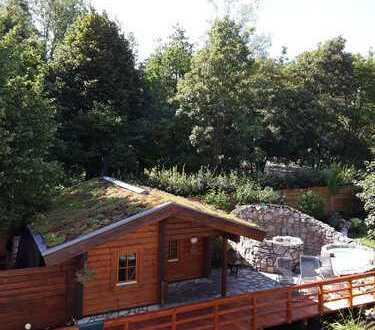 Sauna mit Bistro