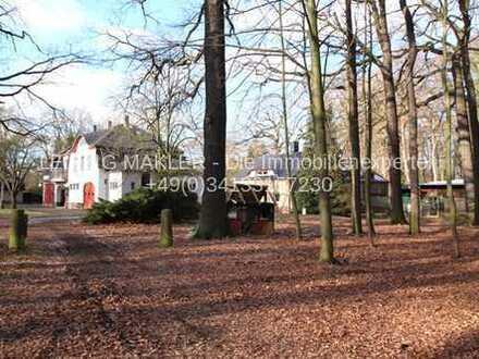 Gepflegtes Herrenhaus mit privater Parkanlage und Weideflächen