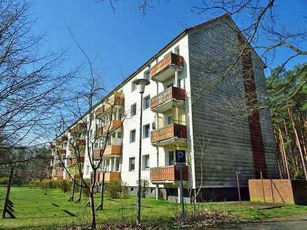 3-Raum Wohnung mit ruhiger Waldlage in Limsdorf