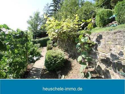 Paradies für Selbstversorger: Gartengrundstück mit Hütte und Grillplatz im Weinberg