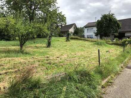 Baugrundstück in Reblage von Ortenberg-Käfersberg