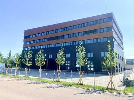 3 TOP Büroflächen zu vermieten. 804 m² / 618 m² / 612 m²